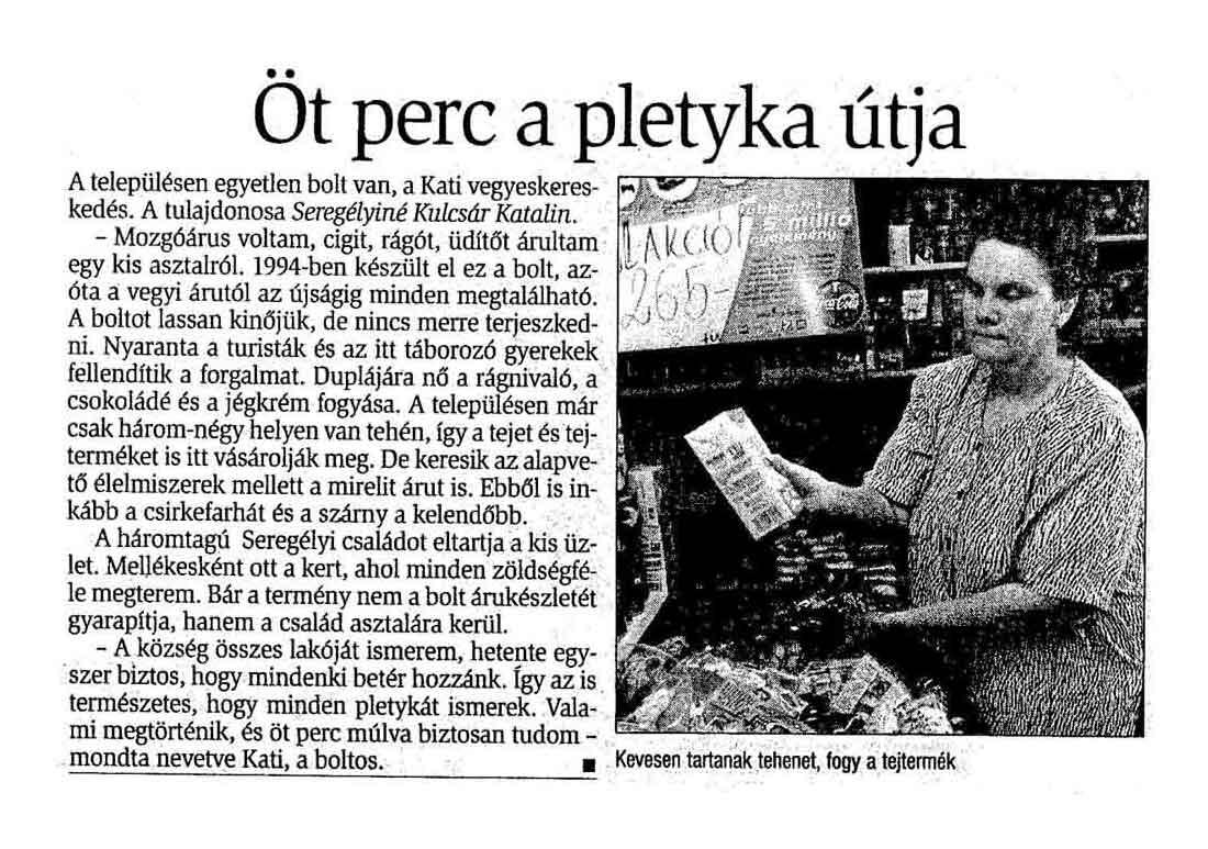 Rólunk írták Zselickisfalud 2001
