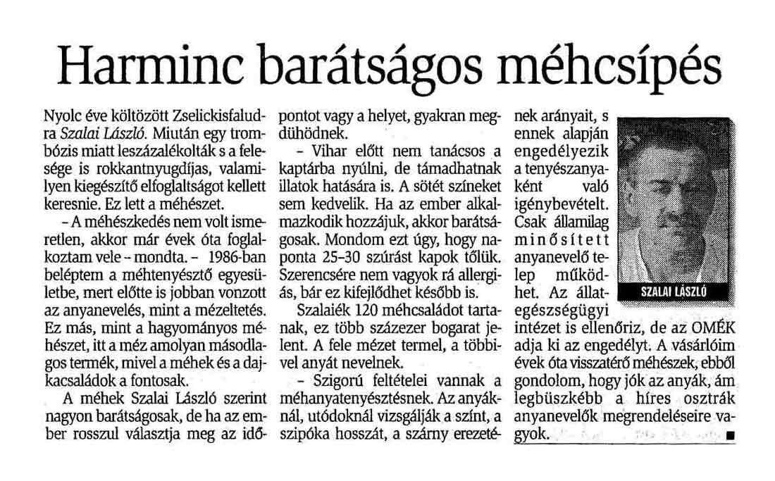 Rólunk írták Zselickisfalud 2003