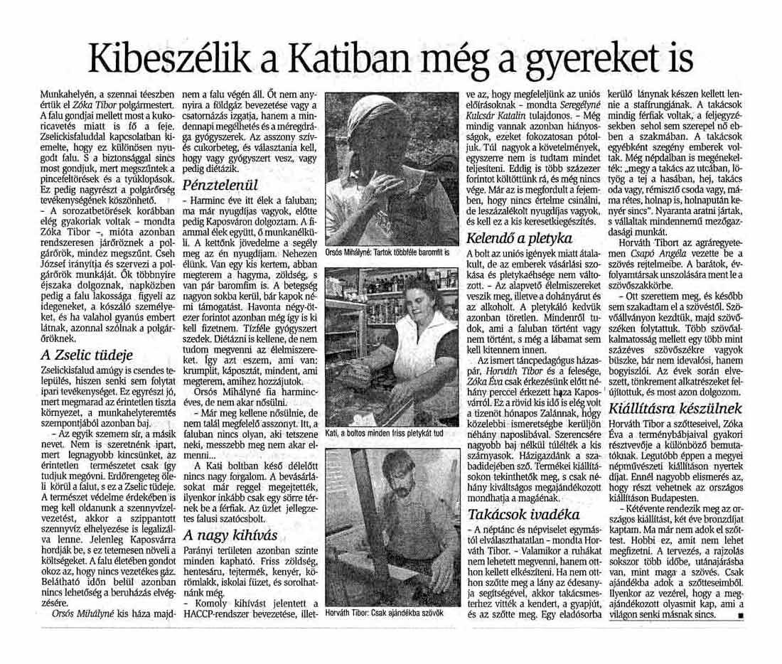 Rólunk írták Zselickisfalud 2004
